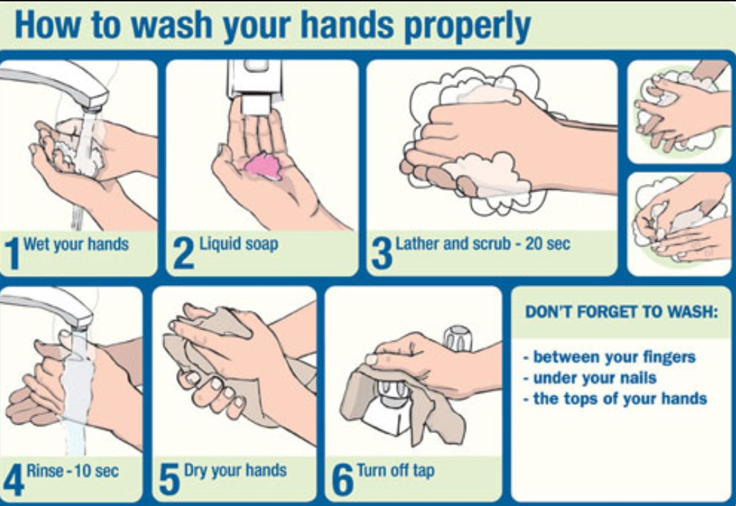 how to wash your hand properly